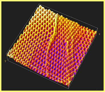 This 3D surface rendering demonstrates the same ripples and folds at the nano level as would be found in macroscale fishing nets. Image courtesty of Adam Feinberg/Harvard University.