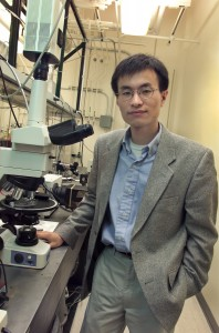Peidong Yang, a chemist with Berkeley Lab and UC Berkeley, will lead the Berkeley component of the Joint Center for Artificial Photosynthesis, a new Energy Innovation Hub created by the U.S. Department of Energy. (Photo by Roy Kaltschmidt, Berkeley Lab Public Affairs)