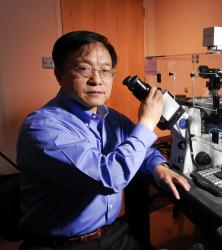 Gang Bao Biomedical Engineering