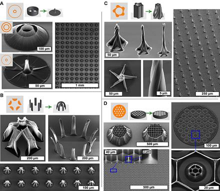 By using unique two-dimensional templates, researchers at the University of Michigan could 