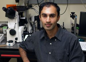 Raghuveer Parthasarathy, a professor of physics and member of the UO's Materials Science Institute and Institute of Molecular Biology