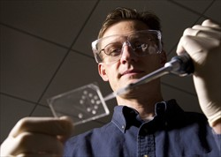 Chemistry professor Adam Woolley created a microchip that could speed up cancer detection.  Photograph by Mark A. Philbrick