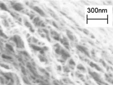 Multi-walled carbon nanotubes are tiny hollow tubes made of pure carbon about 10,000 times thinner than a strand of human hair. NASA is investigating their use to help suppress errant light that ricochets off instrument components and contaminates measurements. Credit: NASA