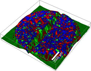 An application example illustrating the working principle of True Surface Microscopy (Topographic Raman Image of a Pharmaceutical Tablet).