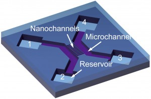 Schematic of a 2-nm nanochannel device, with two microchannels, ten nanochannels and four reservoirs. (Image courtesy of Chuanhua Duan)