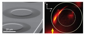 On left, a scanning electron micrograph of Eaton lenses on a gold film. On right, fluorescence imaging shows the intensity of SPPs propagating in z-direction (arrow) and bending to the right when passing through an Eaton lens. The solid line marks the outer diameter of the lens and the dashed line marks the high index region. (Image by Zhang group)