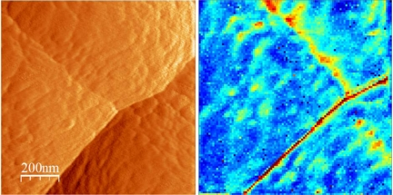 The topographic image (left) of amorphous Si anode in the Si/LiPON/LiCoO2 thin-film battery structure shows the presence of a number of grain boundaries, as well as extensive surface roughness. The ESM image (right) is obtained by measuring the electrochemical strain hysteresis loops at each pixel (100x100 pixel image over 1 micron area). The area hysteresis loop is a measure of Li-ion mobility, and is plotted as 2D map (dark blue corresponds to closed loops, red to open loops). The enhanced Li-ion mobility along the sharp grain boundary is clearly seen, as well as localized hot spots on the diffuse grain boundary and within the grains. The effective resolution of ESM for this material is ~ 10 nm, providing a high-resolution view of Li-ion dynamics in these materials.  (Reprinted from N. Balke, et al., Nano Lett. 10, 3420 (2010).
