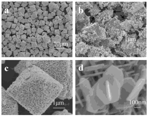 Figure 1: Scanning electron microscope images of ZTO microstructures: (a) low