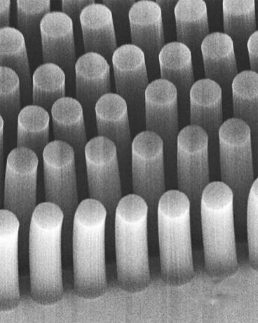 These posts, made of carbon nanotubes, can trap cancer cells and other tiny objects as they flow through a microfluidic device. Each post is 30 microns in diameter.