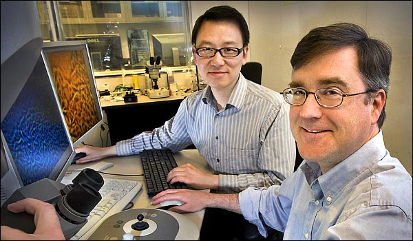 Dong Su and Eric Stach use a powerful electron microscope to analyze samples of activated graphene at Brookhaven�s Center for Functional Nanomaterials. Says Stach: �The CFN provides access to scientists around the world to solve cutting-edge problems in nanoscience and nanotechnology. This work is exactly what this facility was established to do.�
