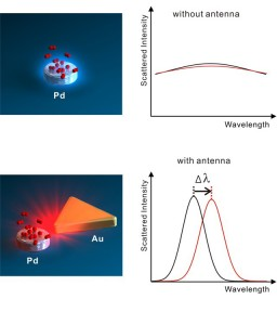 Top figure shows hydrogen (red) absorbed on a palladium nanoparticle, resulting in weak light scattering and barely detectable spectral changes. Bottom figure shows gold antenna enhancing light scattering and producing an easy to detect spectral shift. (Image courtesy of Alivisatos group)