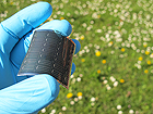 Flexible thin film CIGS solar cell on polymer substrate developed at Empa (Copyright: Empa)
