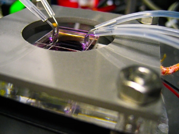 Nanostructures are directly synthesized in parallel microfluidic channels (held by the metal frame) by flowing special chemical reactant solution through the tubing. The microfluidic not only creates the functional device, but is also the final packaged functional LED device itself.