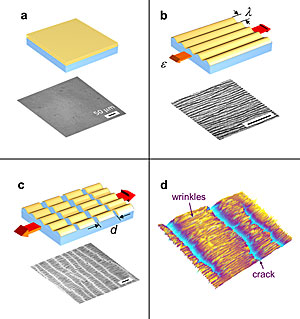Nanomechanical measurements (model system and microimage of typical specimen). a) thin rigid film on elastic substrate b) initial strain induces surface wrinkles parallel to stress c) additional strain induces regular pattern of cracks in the film d) typical specimen imaged with optical profilometer (280 X 210 micrometers.)