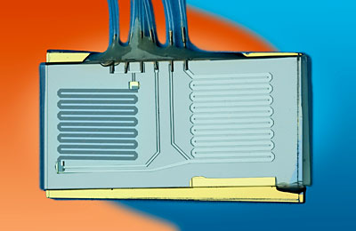 Kent Loeffler, Cornell University