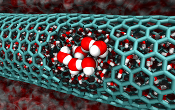 This image from the Caltech team's simulations features a cutaway of a 2.0 nanometer-diameter carbon nanotube, revealing confined water molecules.