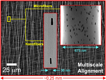 "Researchers have developed a way to align gold nanorods using electrospun polymer ""nano/microfibers."""