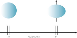 Figure 1: Adding neutrons to the nucleus of a zirconium atom changes its shape from spherical to oblate.