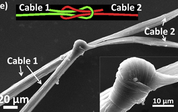 YAO ZHAO/RICE UNIVERSITY