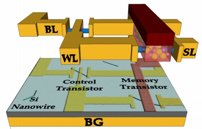 "This diagram shows the layout for a new type of computer memory that could be faster than the existing commercial memory and use far less power than flash memory devices. The technology, called FeTRAM, combines silicon nanowires with a ""ferroelectric"" polymer, a material that switches polarity when electric fields are applied, making possible a new type of ferroelectric transistor. (Birck Nanotechnology Center, Purdue University)"