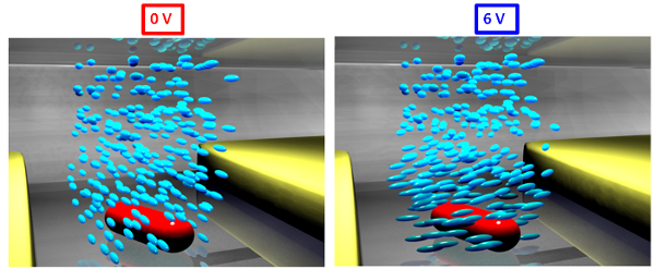 Applied voltage creates a nematic twist in liquid crystals (blue) around a nanorod (red) between two electrodes in an experiment at Rice University. This graphic shows liquid crystals in their homogenous phase (left) and twisted nematic phase (right). Depending on the orientation of the nanorods, the liquid crystals will either reveal or mask light when voltage is applied.