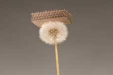 Dan Little, HRL Laboratories LLC