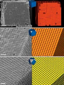 On the left are micrographs of supercrystals of silver polyderal nanocrystals and on the right the corresponding diagrams of their densest known packings for (from top-down) cubes, truncated cubes and cuboctahedra. (Image courtesy of Berkeley Lab)