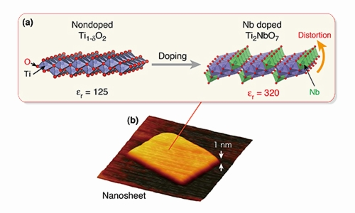 Figure: Tailor-made dielectric nanosheet via controlled nanoscale doping. (a) Structural change induced by Nb doping. (b) AFM image of titanium-niobate nanosheet.