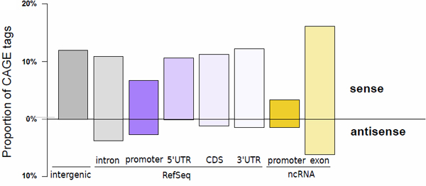 Figure 1 MOE transcription start sites recapitulate known transcript initiation and reveal the extent of non-coding transcripts.