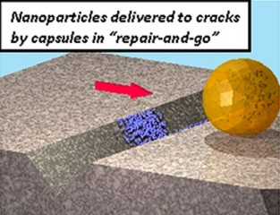 Todd Emrick, UMass Amherst