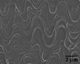The buckled nanotubes look like squiggly lines on a flat surface.
