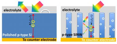 Schematic shows the light trapping effect in nanowire arrays. Photons on are bounced between single nanowires and eventually absorbed by them (R). By harvesting more sun light using the vertical nanotree structure, Wang�s team has developed a way to produce more hydrogen fuel efficiently compared to planar counterparts where they are reflected off the surface (L).