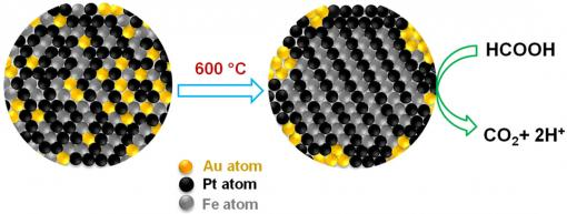Midas touch on the nanoscale Gold atoms create orderly places for iron and platinum atoms, then retreat to the periphery of the fuel cell, where they scrub carbon monoxide from fuel reactions. The tighter organization and cleaner reactions extend the cell's performance life. Credit: Sun Lab/Brown University