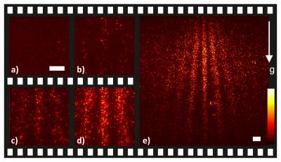 These are selected frames of a movie showing the buildup of a quantum interference pattern from single phthalocyanine molecules.