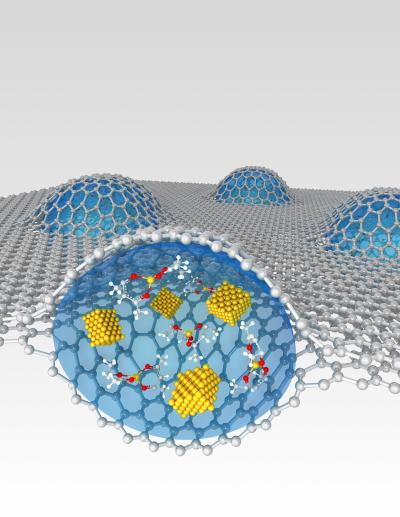 Two sheets of graphene encapsulate a platinum growth solution.