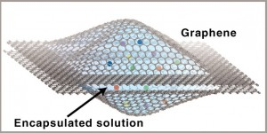 In the graphene liquid cell, opposing graphene sheets form a sealed liquid nanoscale reaction chamber that is transparent to an electron microscope beam. The cell allows nanocrystal growth, dynamics and coalescence to be captured in real time at atomic resolution via a transmission electron microscope.