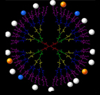 Schematic picture of a dendrimer with multiple branches that are tagged with drug molecules and imaging agents.