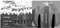 Cross-sectional images of the indium gallium nitride nanowire solar cell. (Image courtesy of Sandia National Laboratories)