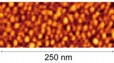 Fig. :Atomic force microscope (AFM) image of ultra-high surface density quantum dots formed by reducing the amount of gallium irradiation to 3 monolayer at a growth temperature of 30�C. An ultra-high surface density of 7.3 x 1011/cm2 was achieved.