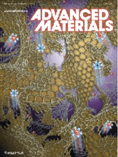The front cover image represents the 3-D structure of a new polymer-derived nanographene bulk material that consists of a 3-D network of single-layer graphene nanoplatelets. The material is mechanically robust and combines a graphene-like surface area with an open macroporosity thus allowing one to dynamically control its macroscopic properties through ion-induced interfacial electric fields.
