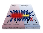 Chemical processes can be activated by light without the need for bulk heating of a material through a process developed by researchers at Rice University. The technique involves coating nanorods with thermophilic enzymes that are activated at high temperatures. Lighting the plasmonic gold nanorod causes highly localized heating and activates the enzyme. (Credit: Lori Pretzer/Rice University)