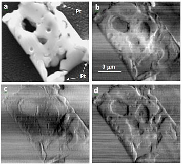 (a) Scanning electron microscope (SEM) image of the solid oxide fuel cell (SOFC) specimen adhered on a Si3Ni4 window with Pt welding. (b-d) are horizontal phase-gradient scanning x-ray microscope images obtained by differential intensity, moment analysis and Fourier-shift fitting algorithms, respectively. Artifacts and blurring effects can be seen in (b) and (c), as compared to (d).