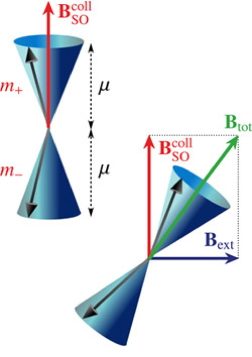 Images illustrate how collective spin excitations behave under the effect of the spin-orbit field, with and without external magnetic field. � 2012 American Physical Society