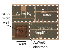 Photograph of integrated amplifiers. The well supporting the membrane and channel is noted in the figure.