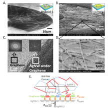 "Electron microscope images show a new material for transparent electrodes that might find uses in solar cells, flexible displays for computers and consumer electronics, and future ""optoelectronic"" circuits for sensors and information processing. The electrodes are made of silver nanowires covered with a material called graphene. At bottom is a model depicting the ""co-percolating"" network of graphene and silver nanowires.Purdue University image/Birck Nanotechnology Center"