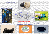Fig. 1. Promising applications of graphene oxide