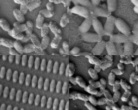 Researchers at MIT and the University of North Carolina created these coated nanoparticles in many shapes and sizes.