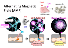 Design concept for a smart hyperthermia nanofiber system that uses magnetic nanoparticles (MNPs) dispersed in temperature-responsive polymers. Anticancer drug, doxorubicin (DOX), is also incorporated into the nanofibers. The nanofibers are chemically crosslinked. First, the device signal (alternating magnetic field, AMF) is turned 'on' to activate the MNPs in the nanofibers. Then, the MNPs generate heat to collapse the polymer networks in the nanofiber, allowing the 'on-off' release of DOX. Both the generated heat and released DOX induce apoptosis of cancer cells by hyperthermic and chemotherapeutic effects, respectively.