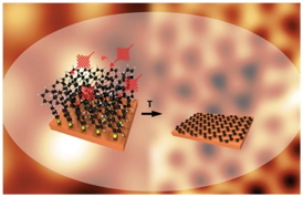 "The cover picture of the scientific journal ""Advanced Materials"" gives a schematic representation of the conversion of the monolayer of the complex molecule biphenyl thiol in the two-dimensional graphene crystal by electron irradiation and thermal treatment.Fig.: Advanced Materials 25 (2013). Copyright Wiley-VCH Verlag GmbH & Co. KGaA. Reproduced with permission."