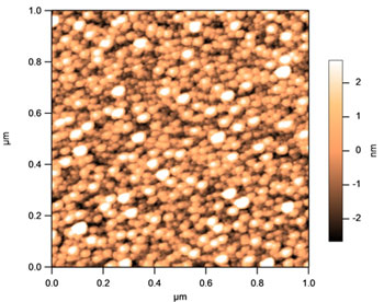 Atomic Force Microscopy (AFM) picture of the catalyst for the nanotube growth.